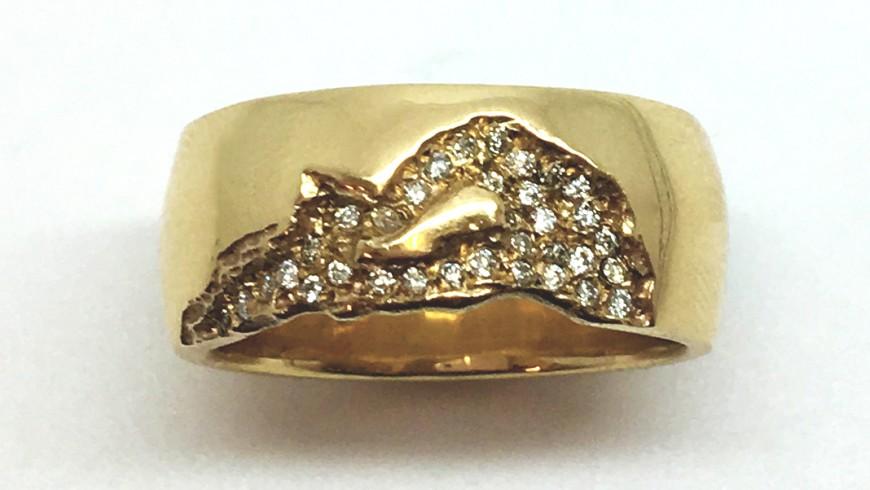 New Darwin Ring!